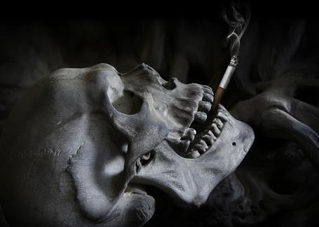 skull-2456396_1920
